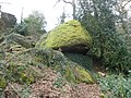 Moss-covered boulder, near Lustleigh - geograph.org.uk - 1194512.jpg