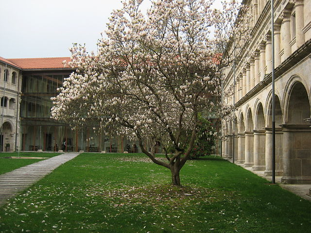 Ficheiro:Mosteiro de Santo Estevo de Ribas de Sil, Nogueira de Ramuín, Galiza...