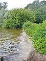 Mueggelsee - Noerdlichen Uferweg (Mueggel Lake - Northern Bankside Walk) - geo.hlipp.de - 38490.jpg