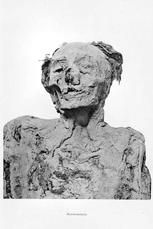 Ahmose-Henuttamehu - Mummy of Ahmose-Henuttamehu, found in DB320