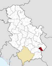Location of the municipality of Babušnica within Serbia