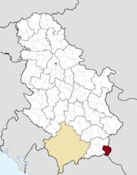 Location of the municipality of Bosilegrad within Serbia