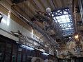 Museo de La Plata - Sala de osteología.JPG