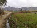 My village in rainy day.jpg