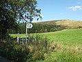 Mynydd Allt-y-grug and footpath - geograph.org.uk - 1482717.jpg
