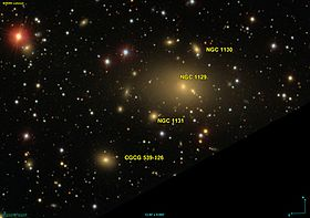 Image illustrative de l'article NGC 1131
