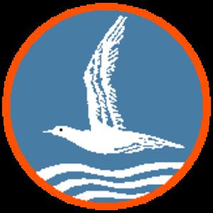 Nationale Jeugdstorm - Badge of the NJS