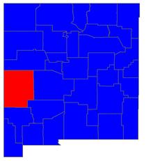 2006 Wahlergebnisse der Gouverneure von New Mexico nach Landkreisen