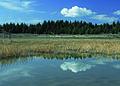 NRCSMT01014 - Montana (4879)(NRCS Photo Gallery).jpg