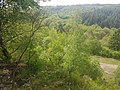 Nationalpark Eifel -3- samsung s7 camera.jpg