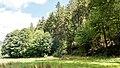 Naturschutzgebiet Ilmwand Ilmaue I.jpg