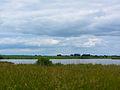 Naudin Kleiner Dambecker See 2014-06-01-2.jpg