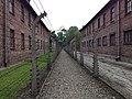 Nazi deathcamp Auschwitz (Polska, Kraków 2014) (14339039053).jpg