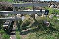 New Stile on Porth Warna - geograph.org.uk - 828616.jpg