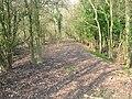 Nore Track, Wolstonbury.JPG