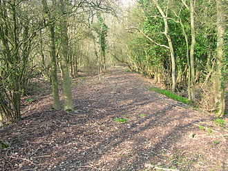 London to Brighton Way - Part of the Nore Track on Wolstonbury Hill above Clayton