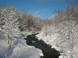 View of the North Branch of the Salmon River after a fresh snowfall, north of Redfield, in the Tug Hill region of New York.