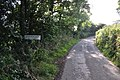 North Devon - Country Lane (geograph 4636102).jpg