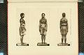 Nova Guinea - Vol 3 - Plate 47.jpg