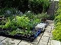 Nursery - Flickr - peganum (24).jpg