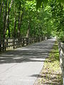 Oak Savanna Trail P5200034.JPG