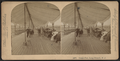 Ocean Pier, Long Branch, N.J, from Robert N. Dennis collection of stereoscopic views 5.png