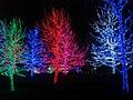 Oklahoma City Christmas Lights - panoramio - MARELBU (9).jpg
