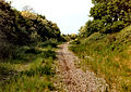Old railtrack bed' - geograph.org.uk - 1740194.jpg