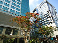 Two mid-height glass-clad buildings with trees in front