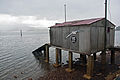 Otago Peninsula boat sheds series 6, 28 Aug. 2010 - Flickr - PhillipC.jpg