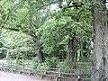 Otomin - panoramio (3).jpg