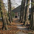 Overzicht laan bij het huis, huis op de achtergrond - Glimmen - 20380163 - RCE.jpg