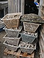 Oyster boxes from Cap Ferret.jpg