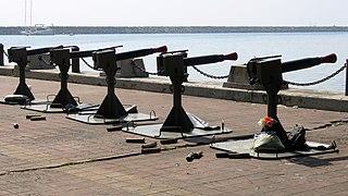PN Ceremonial Cannons.jpg