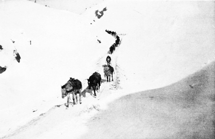 PSM V55 D017 Coming down the white pass winter 1898.png