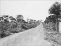 PSM V81 D033 Road from lake to the pier in the distance.png