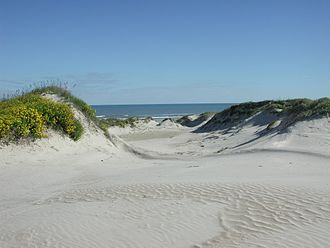 Padre Island - Padre Island sand dunes.
