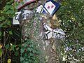 Panneaux dans un arbre.jpg