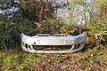 Paraurti auto abbandonato nel Parco Alto Milanese - Legnano (MI), Lombardy, Italy - 2020-11-02.jpg