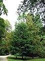 Park Południowy we Wrocławiu 02.jpg
