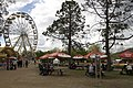 Parkes ACT 2600, Australia - panoramio (65).jpg