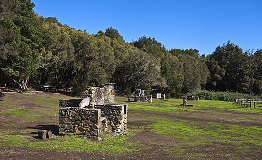 Parque nacional de Garajonay, La Gomera, España, 2012-12-14, DD 09