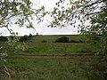 Part of Salisbury Plain - geograph.org.uk - 250426.jpg