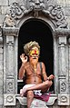 Pashupatinath Temple 103.jpg