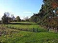 Pasture, Greys - geograph.org.uk - 1776090.jpg