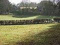 Pastures, Lambourn Woodlands - geograph.org.uk - 724868.jpg