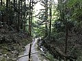 Path near Otometoge St. Mary Church 4.jpg