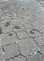 Pavement detail, Tiraspol - panoramio.jpg