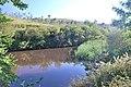 Pericuito - panoramio.jpg