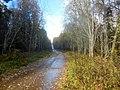 Permskiy r-n, Permskiy kray, Russia - panoramio (764).jpg